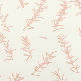 Rosemary (Pale Pink) - white - £130 per 3m roll (134cm wide roll)